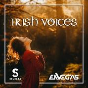 DJ Selecta & Envegas / Irish Voices