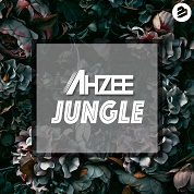 Ahzee / Jungle - Single