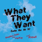 Stephen Oaks & JayKay / What They Want (Lets Go At It) (feat. Pitbull) - Single