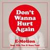E-Motion / Don't Wanna Hurt Again (feat. Elle Vee & Sean Paul) - Single