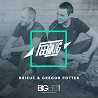 Brieuc & Gregor Potter / Feeling - Single