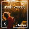 DJ Selecta & Envegas / Irish Voices - Single