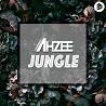 Ahzee / Jungle - Single