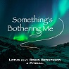 Lotus / Something's Bothering Me (feat. Robin Bengtsson & Pitbull) - Single