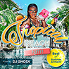 Tropical Beach Party!  - Best of Summer Anthem! (mixed by DJ SHOTA)
